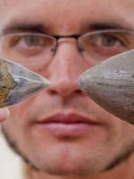 bespectacled man holding two fossilized sharks' teeth